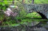 stone bridge reflecting in water