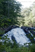 waterfall, new hampshire, summer, landscape, trees, Kimberly J Tilley