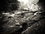 river, glaciers, rocks, stone, bridge, trees, summer, black and white, Kimberly J Tilley