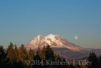 Photograph Copyright ©2014 Kimberly J Tilley. All rights reserved worldwide.