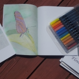 I colored this Zebra Longwing butterfly with colored pencils.