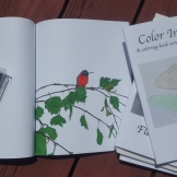 I colored in the Humming Bird with marker. The ink did not bleed through onto another page.