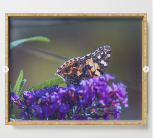 Butterfly with purple flowers photograph on a serving tray